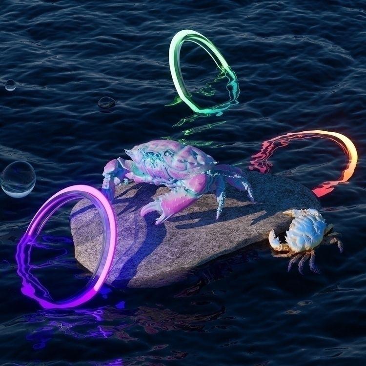 01 Crab collection Follow Faceb - camilociprian   ello
