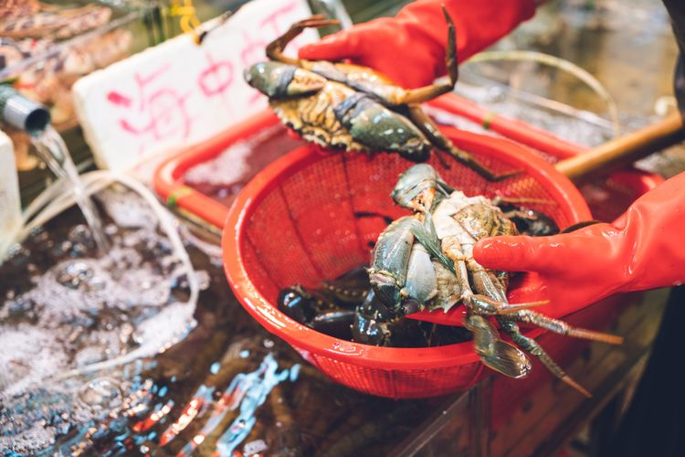 buying crabs hongkong market - jonathan_tsc | ello