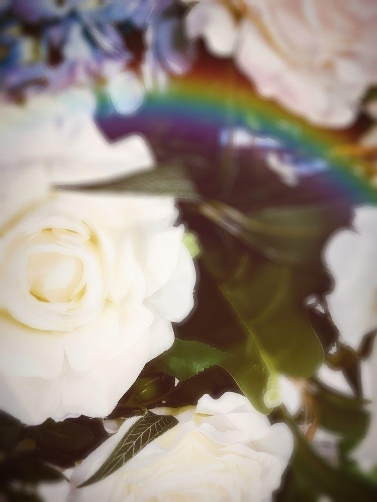 unfocused, overtherainbow, beautyiseverywhere - photographyaddiction08 | ello