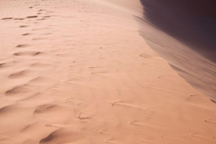 Pink Sand - utah, sand, sanddunes - ilirtahiri | ello