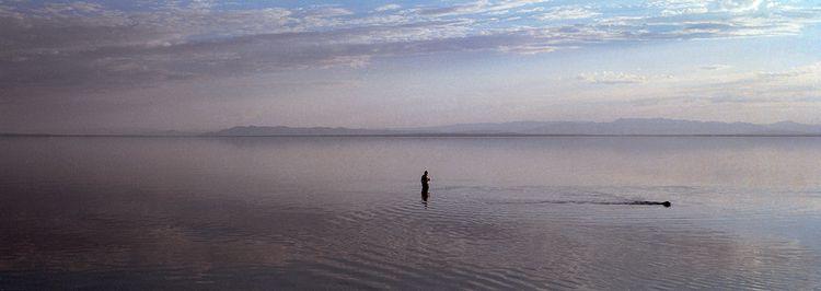man, beer dog, Bombay Beach, Ca - frankfosterphotography | ello