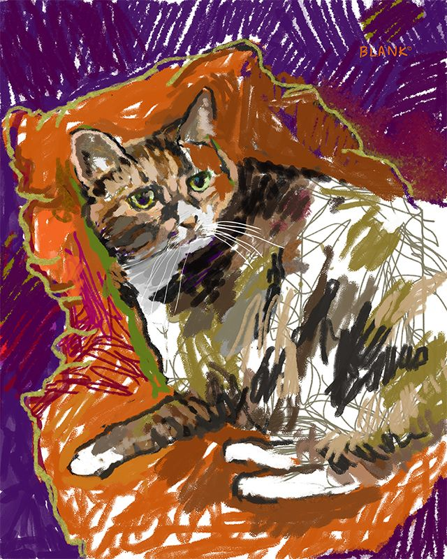 Remembering LC tabby cat. DOGMA - dogmaportraits | ello