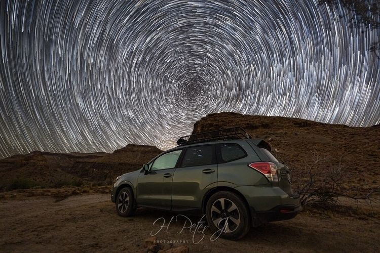 Snapshot DAY 2 - FORESTER STARS - scorpioonsup | ello