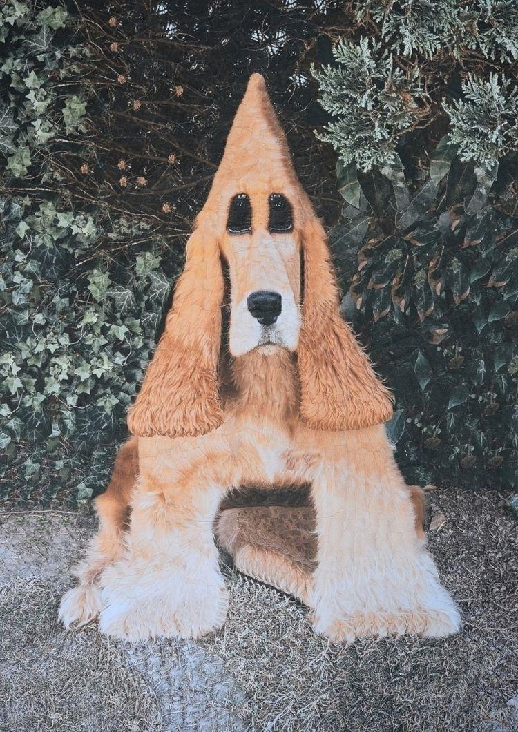 Tobby, 8.2 11.6 inches - dogs, collage - loladupre   ello