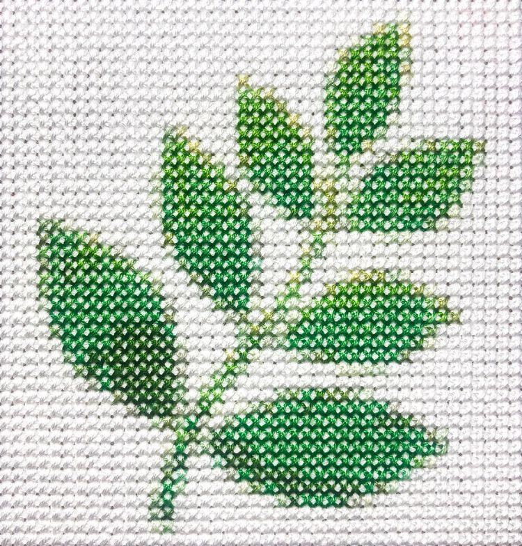 herb, 4.8 4 inches - aubrey | ello