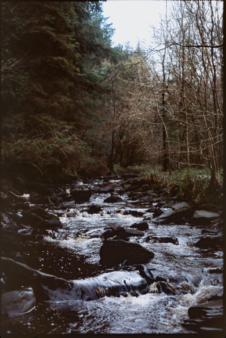 Stream Slieve Bloom, Ireland, J - blssm | ello