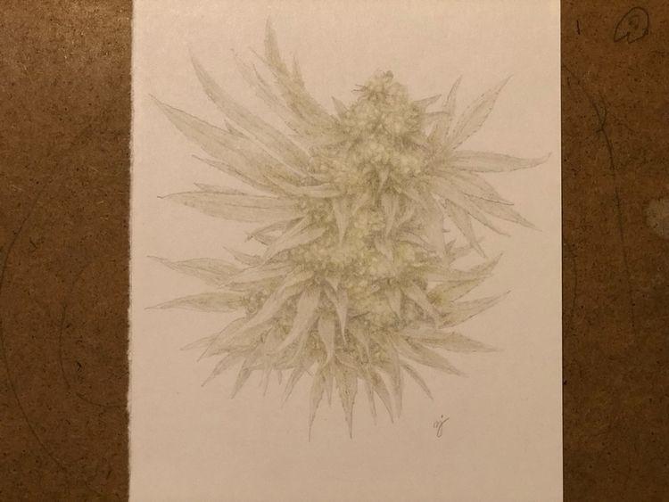 Healing flower - heal, art, drawing - mindsketchin   ello