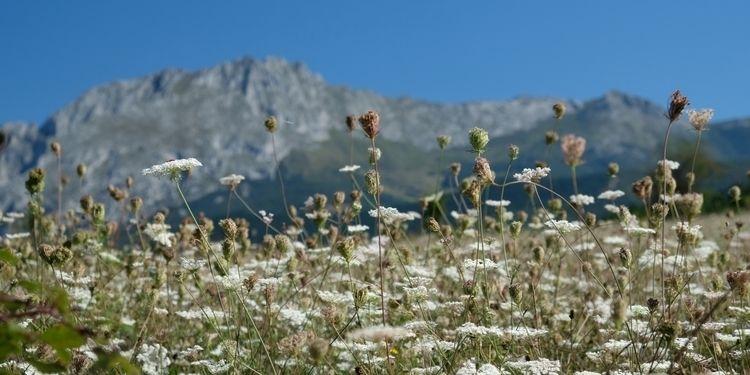 Picos de Europa hike, day 1: da - red_lenses | ello