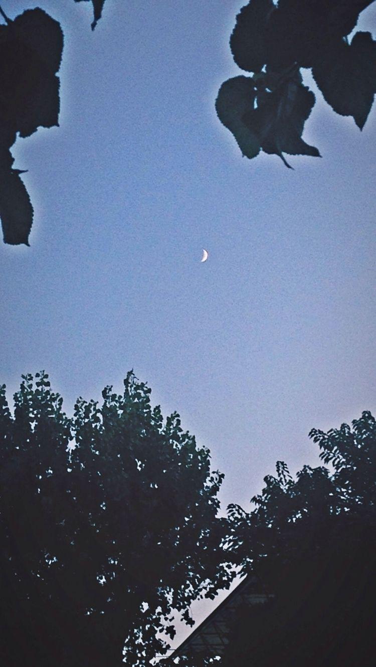 sun watches moon secrets - kohananeptune | ello