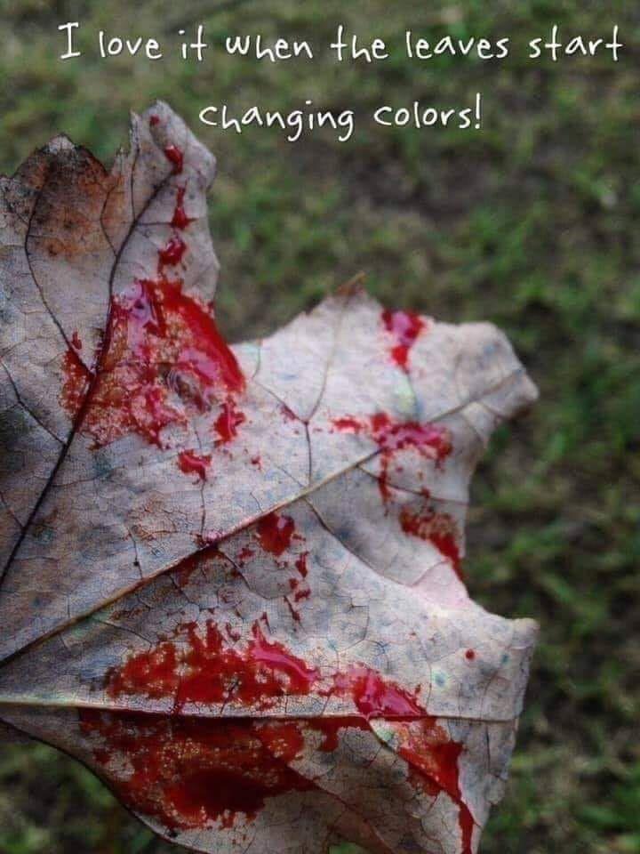 halloween - ellohorror   ello
