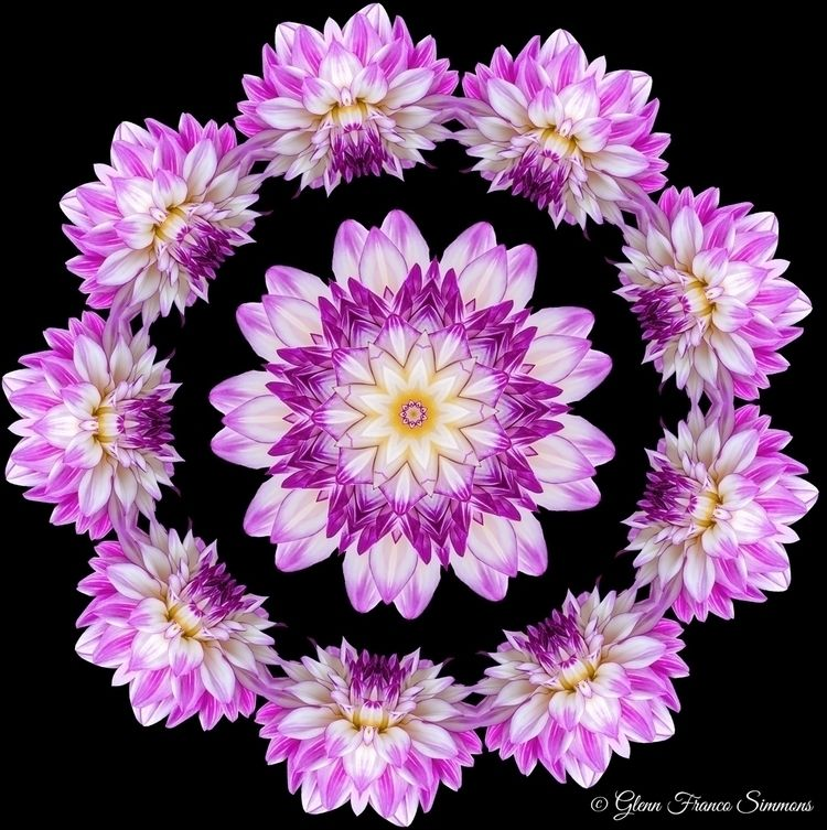 Dahlia Flower Temple 9-pointed  - bahaiwritingsasart | ello