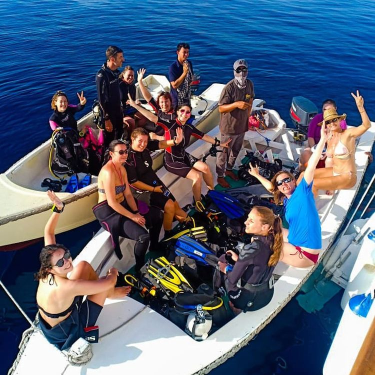 3D2N trip Komodo diving liveabo - petitandromeda   ello