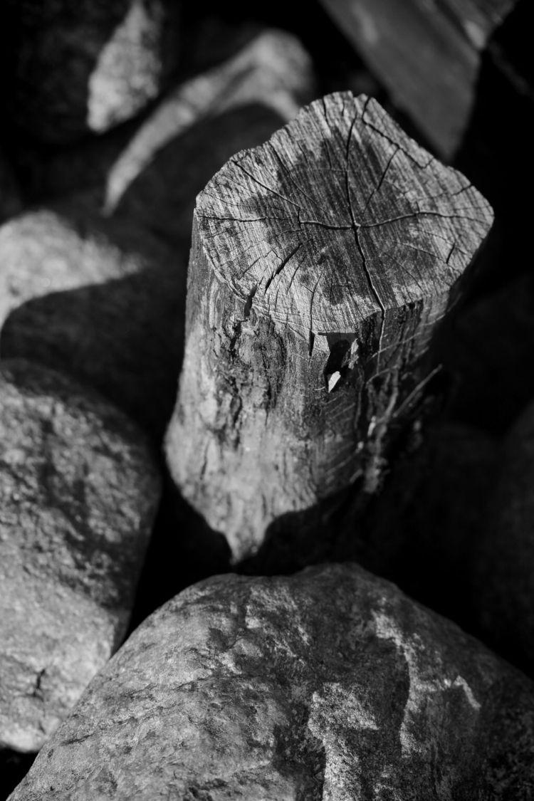 Stump - taari | ello