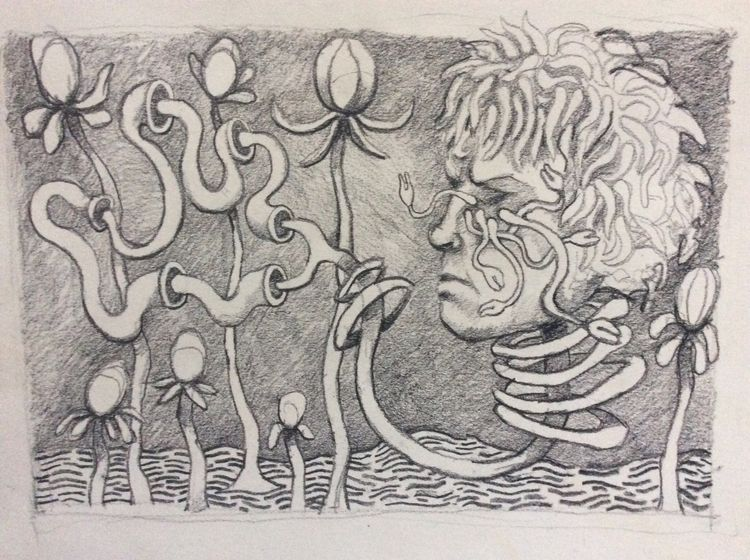 portrait Poppies - drawing, graphite - dan_corrigan | ello