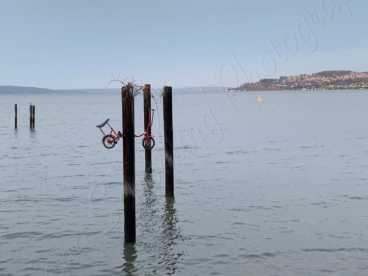 tide, bicycle, pier, water, pugetsound - schoolingdiana | ello