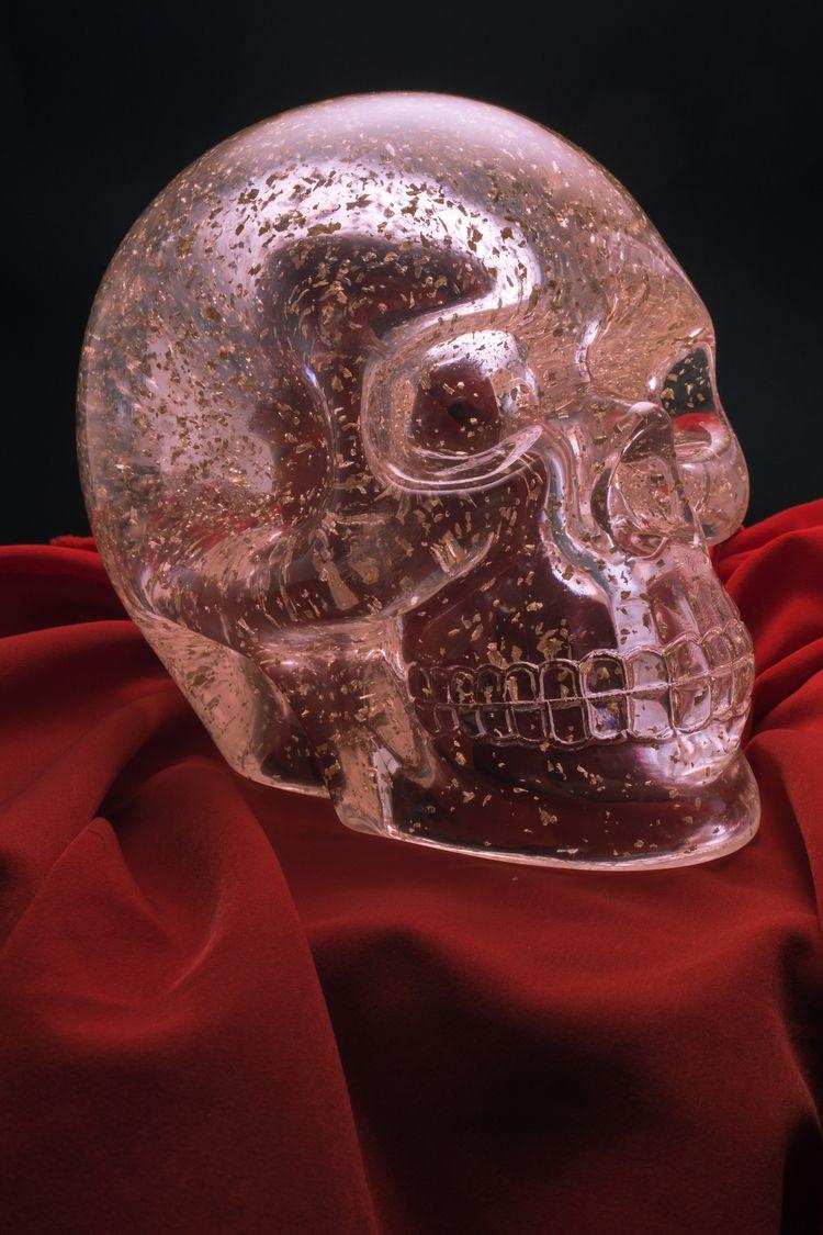 Skull Dallas Texas 2019 Canon E - dangilman | ello