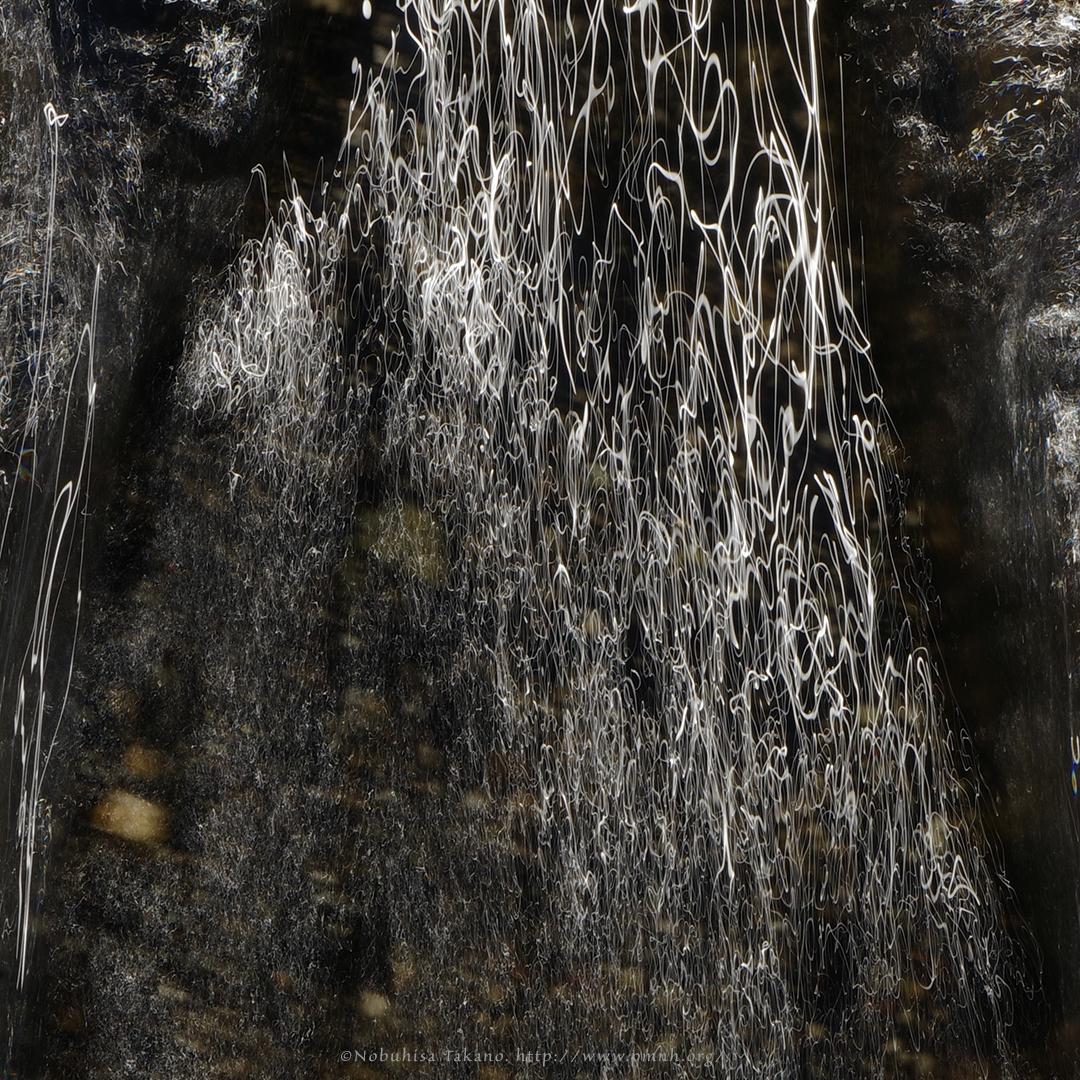 Creek, 1912#3604 'ascensional - nature, - ntakano | ello