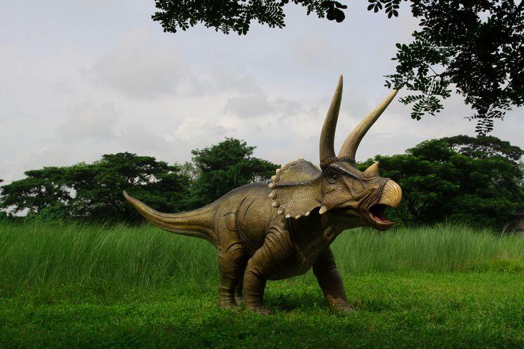 Triceratops dinosaur sculpture  - natureworks   ello