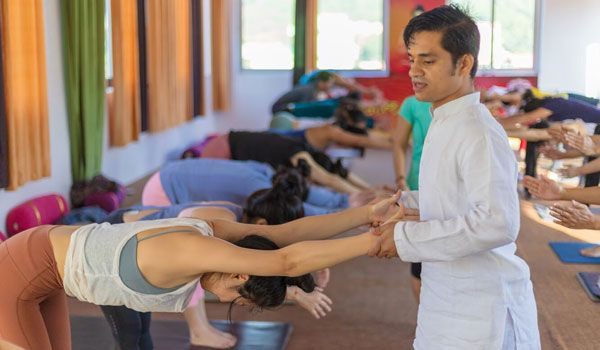 200 hour yoga training India ca - vishnuyoga | ello