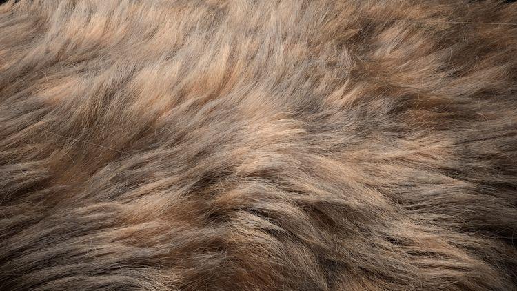 Fur, fur tutorial youtube  - artofcharly | ello