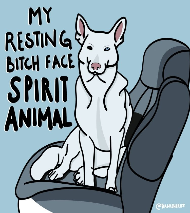White German Shepherd Husky - R - danisheriff | ello