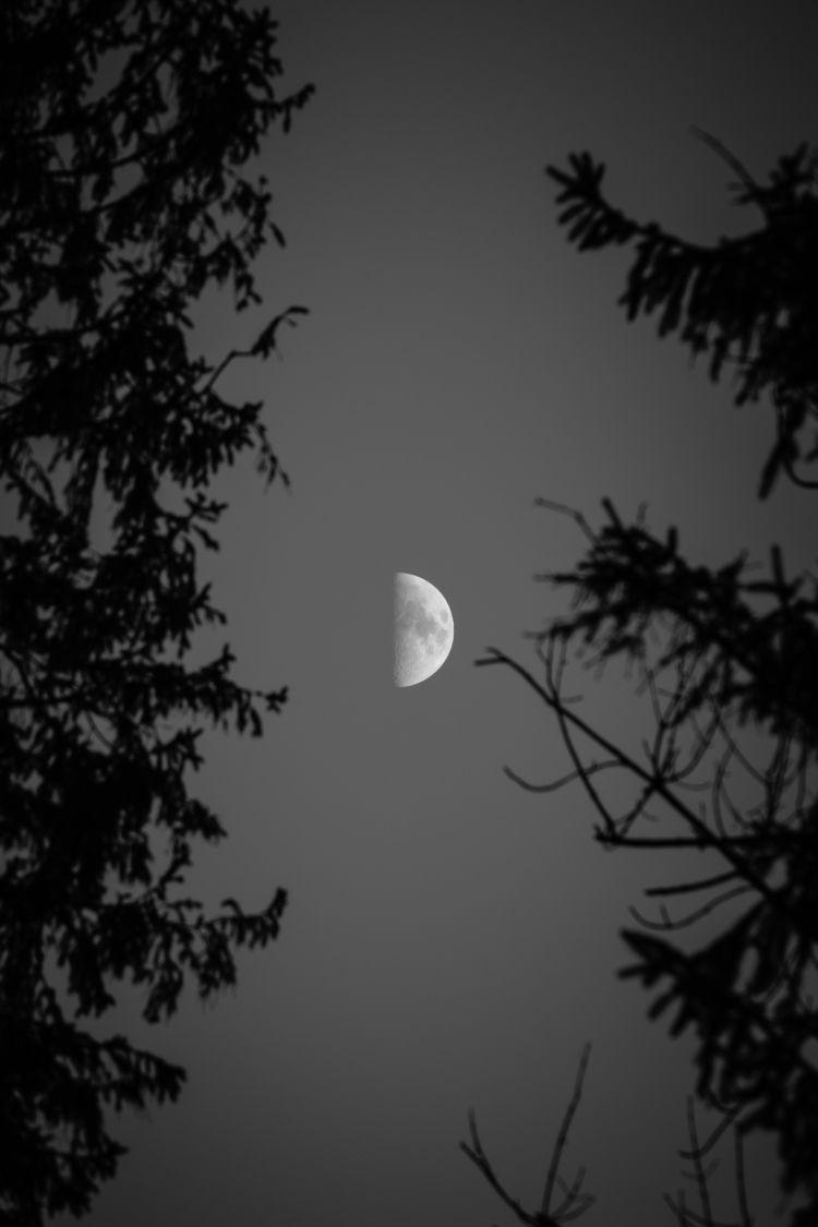 Moon - moon, halfmoon, themoon, bwmagazine - ilirtahiri | ello