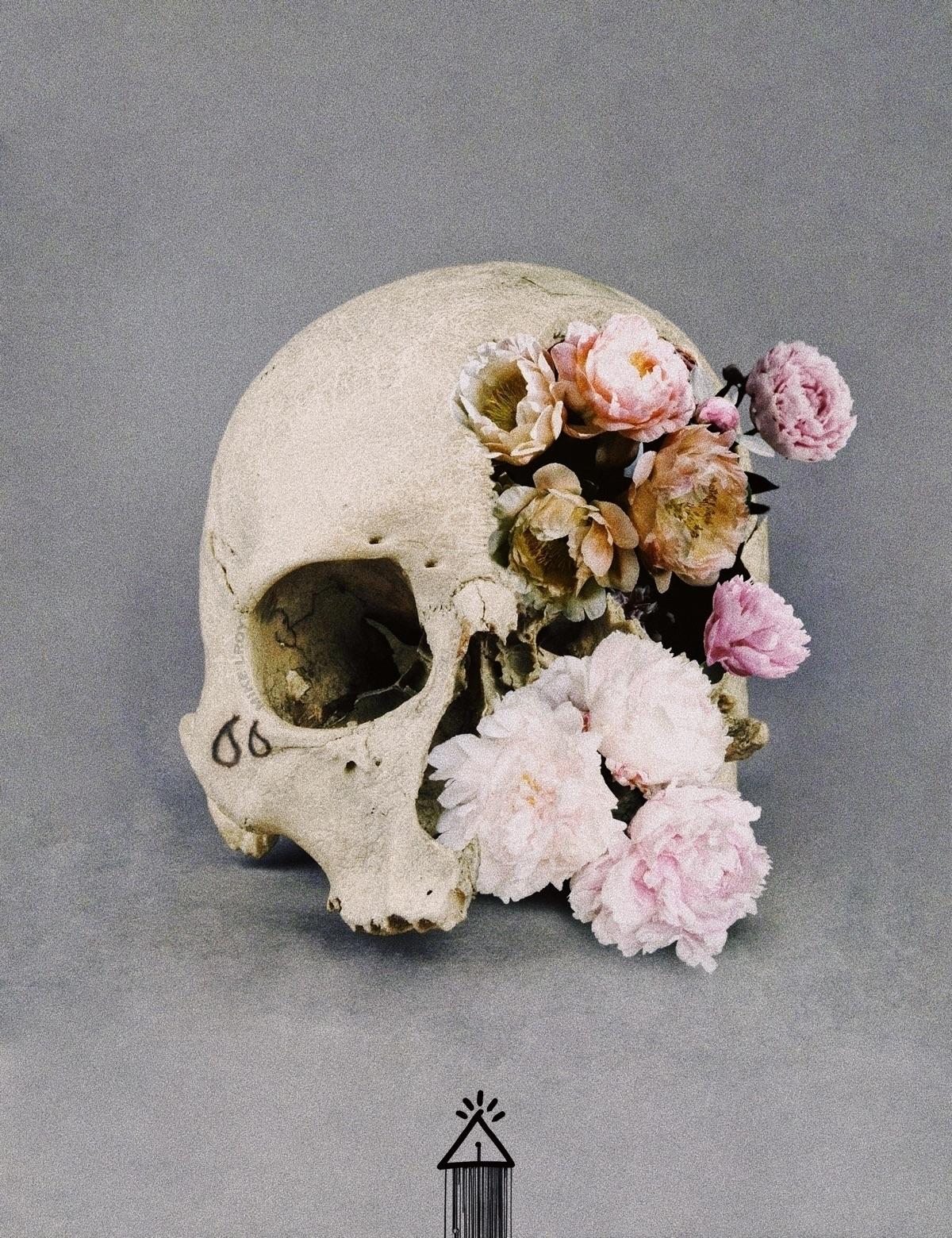 art, skull, flowers, peony, peonies - mike_lroy | ello