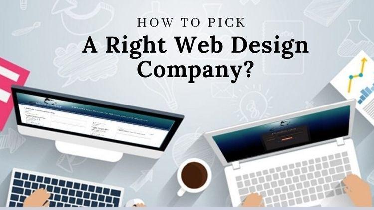 Decide Company Good Web Design  - sfwpexperts | ello