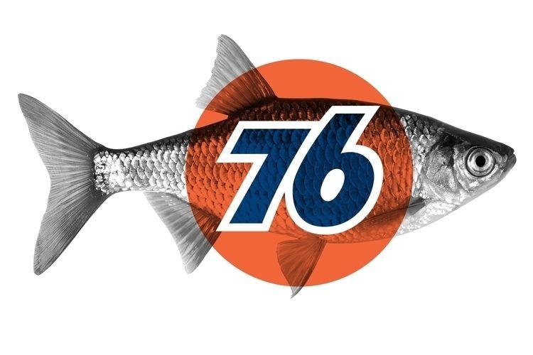 union 76 fish art_original phot - pigattodesign   ello