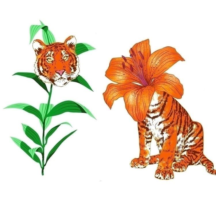 Tiger Lily - digitalillustration - marijkebouchier | ello