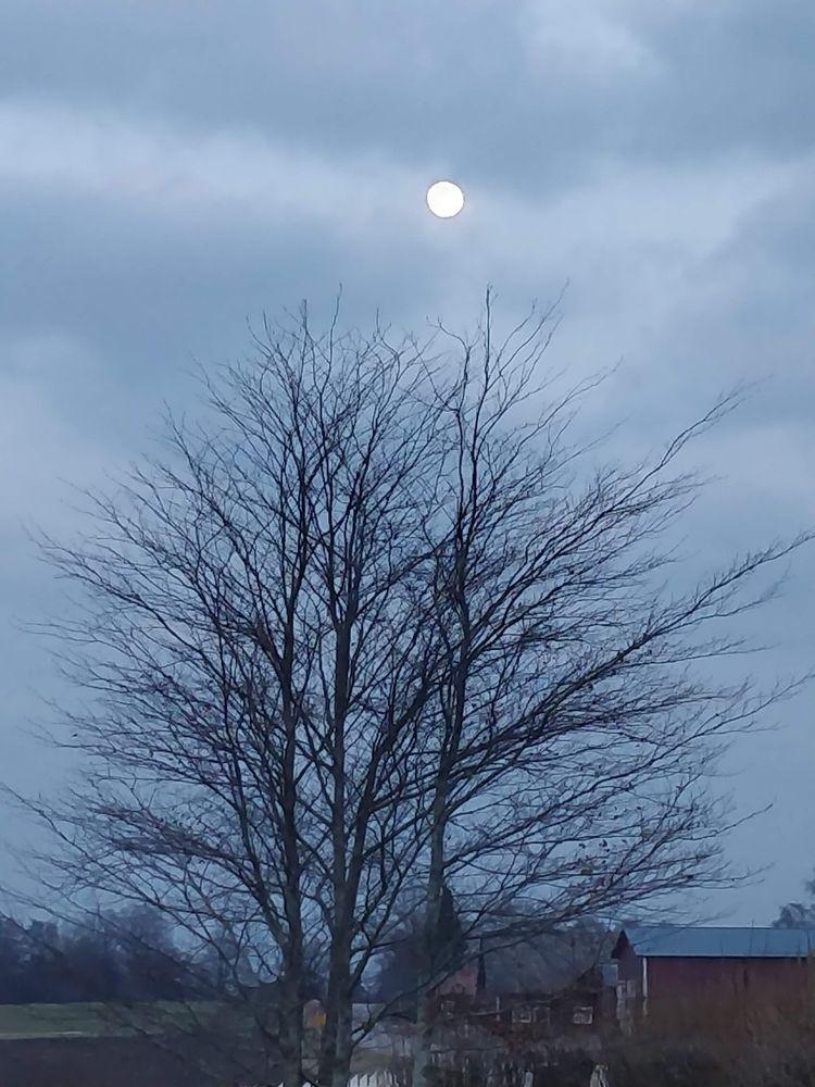 moon, silver, sweden, oneyear - omtanke | ello