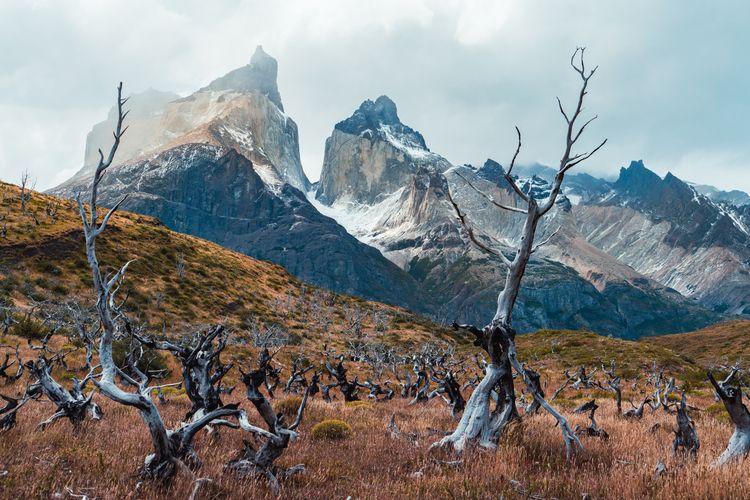 Torres Del Paine, Patagonia, Ch - dis_satisfied | ello