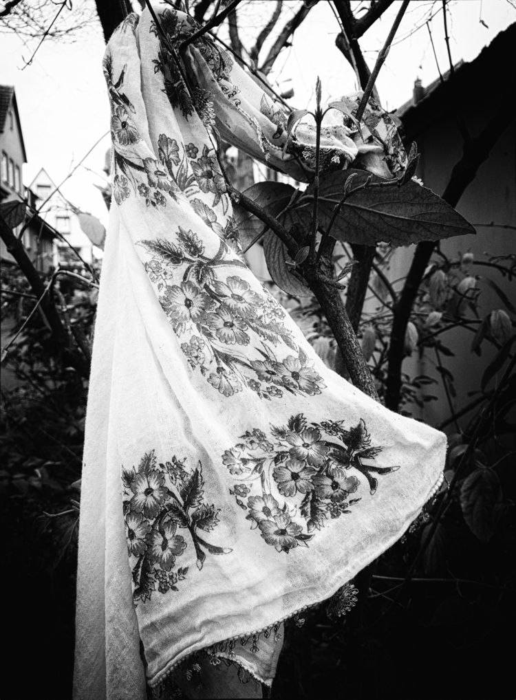 La primavera - photography, shawl - marcushammerschmitt | ello