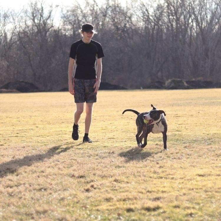 Boys dogs - interrailing | ello