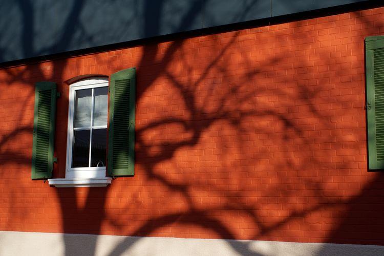 Als der Frühling fast begann - photography - marcushammerschmitt | ello