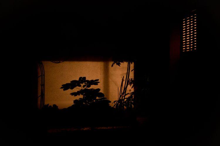 room view - photography, confinement - flommeunier | ello