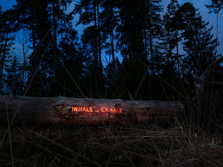 Message forest: INHALE ... EXHA - philipp_frank | ello