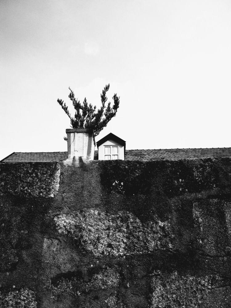 Porto, Portugal - blancetnoir, monochrome - teresaforever | ello