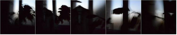 corpus, photocollage - karineduval | ello