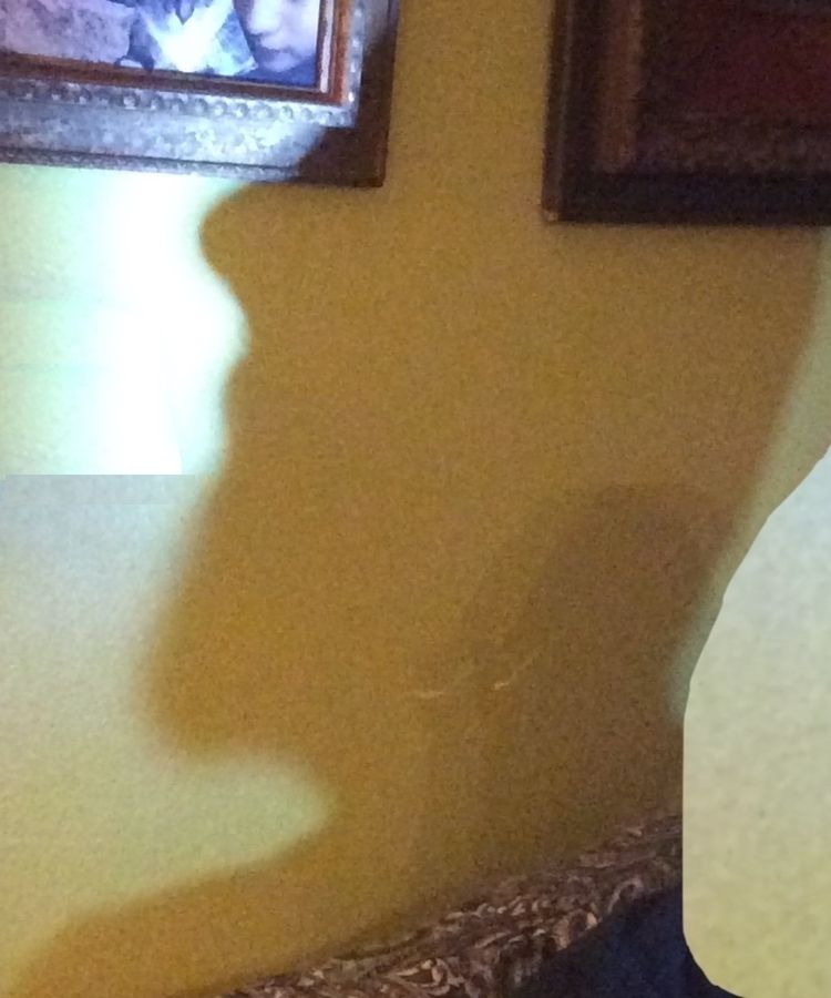 selfless portrait 12 shadow hea - divinewind | ello
