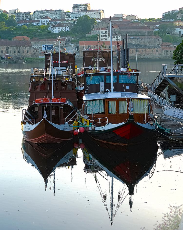 Fotógrafo Brasileiro em Porto,  - silviocunhafotografia   ello