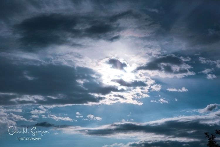 Beautiful clouds morning, hibis - gothicbutterfly | ello