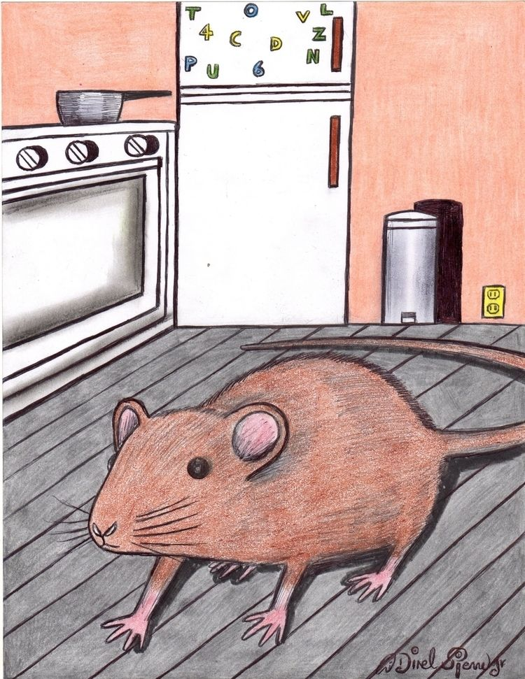 Rats tales - art, design, illustration - odinelpierre | ello
