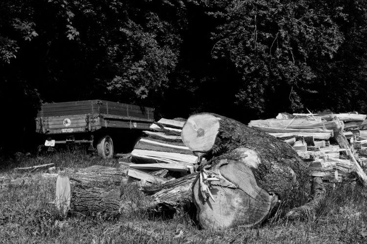 La fin du monde - photography, snapshot - marcushammerschmitt | ello