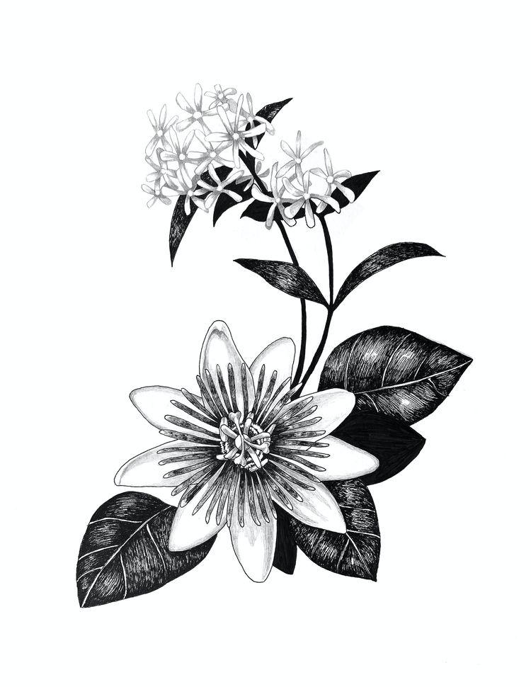 Ikebana healing 6 - Passion flo - yushinkato | ello