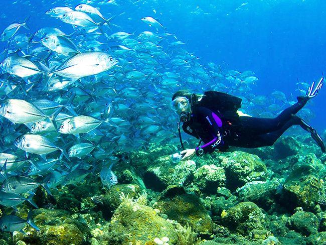 scuba diving summer USA Scuba g - outdoortravelpassion | ello