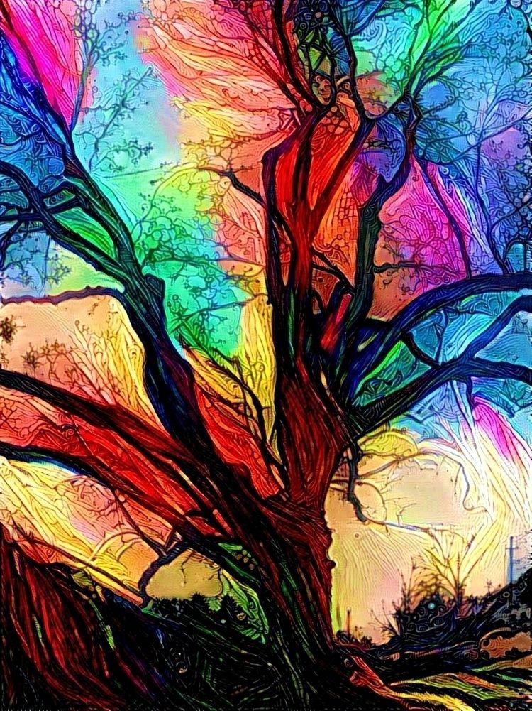 Rainbow tree - photography - kenlong | ello