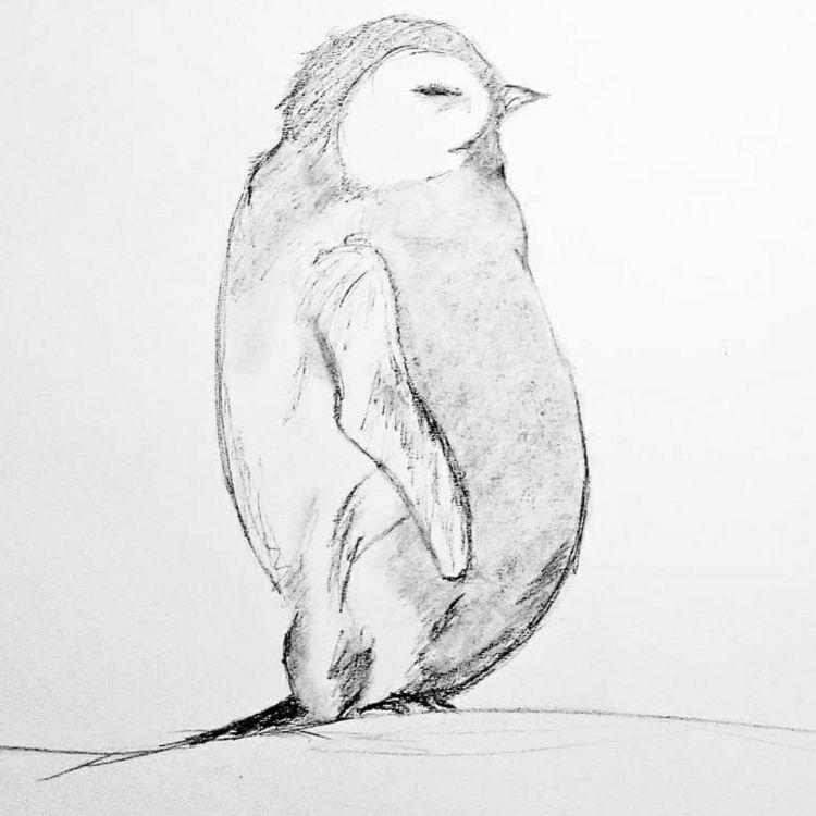 chubby emperor penguin. Mechani - kindred_creates | ello
