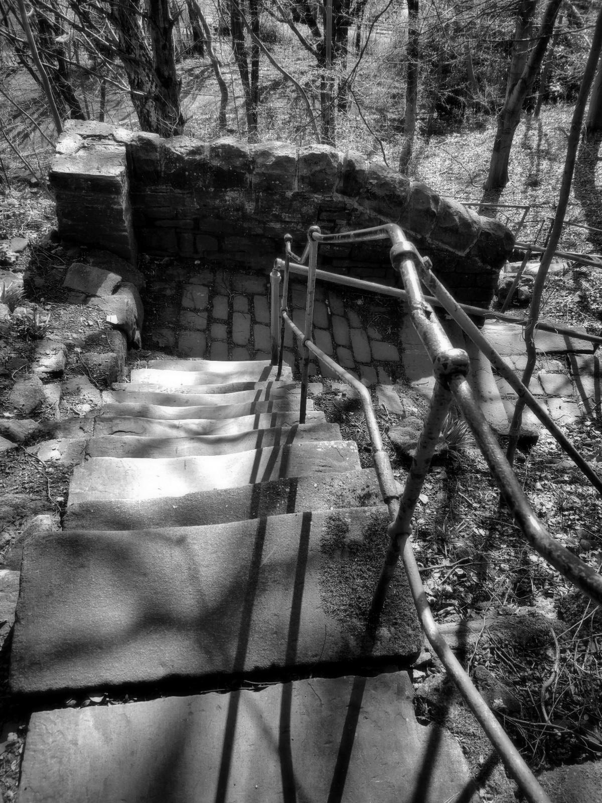 stair, descent, bnw, monochrome - tevere | ello