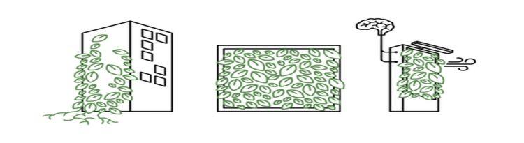 Muros verdes   son? Tipos Benef - gaboismo   ello